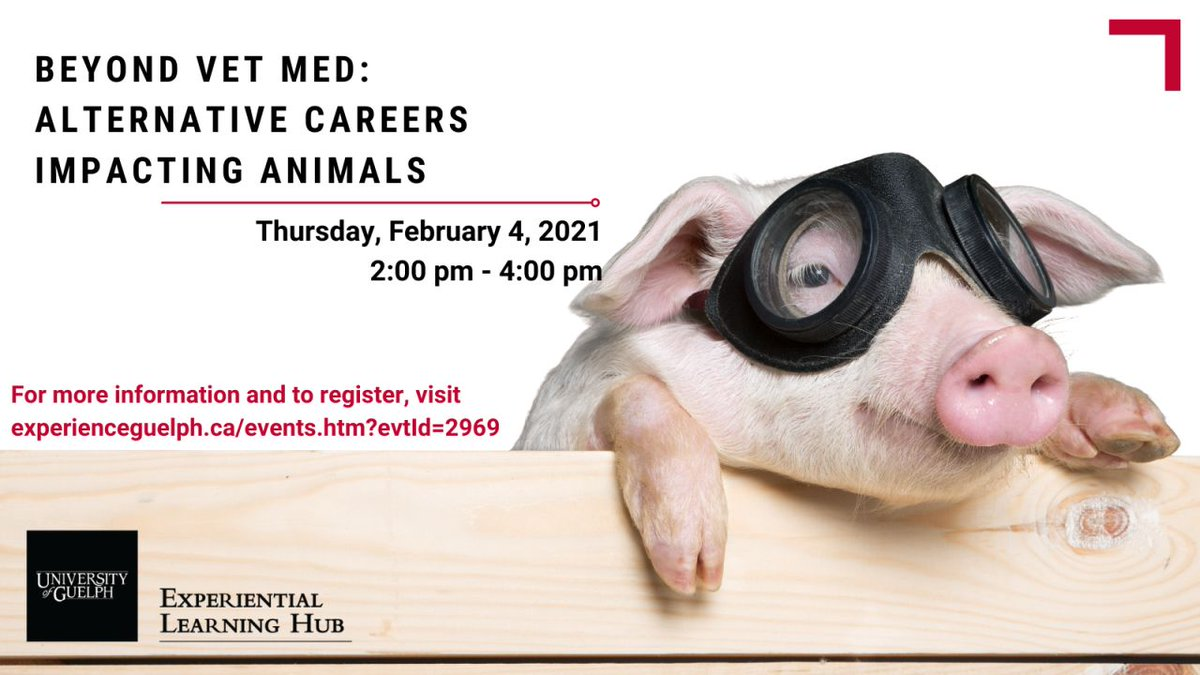 There are many careers that impact animals. Join us Feb. 4 to hear from professionals who impact animals in interesting ways! Reserve your spot @  #uofg