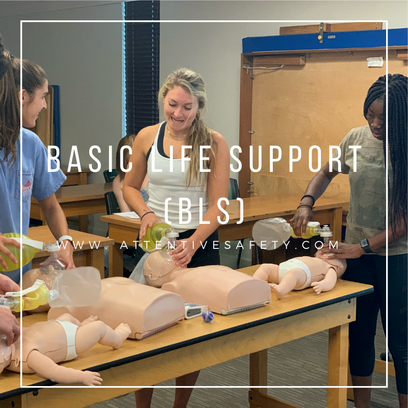 Attentive Safety offers the American Red Cross Basic Life Support (BLS) course to provide participants with the knowledge and skills they need to assess, recognize and care for patients who are experiencing respiratory arrest. #bls #redcross #cpr
