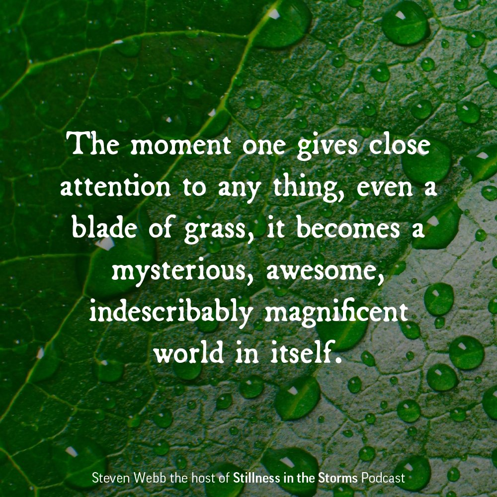 """""""The moment one gives close attention to any thing, even a blade of grass, it becomes a mysterious, awesome, indescribably magnificent world in itself.""""–Henry Miller"""