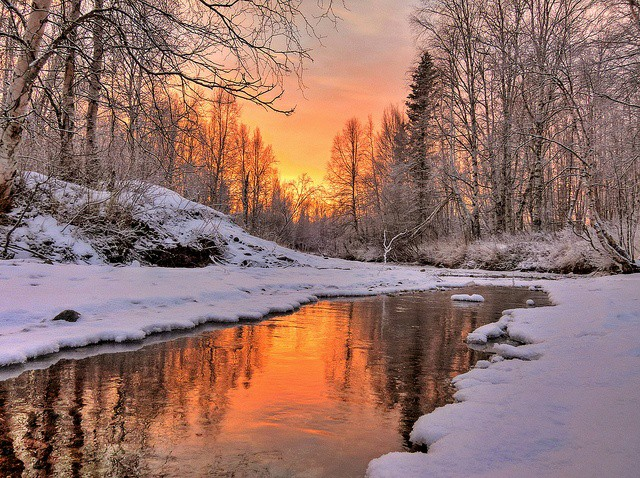 Hello dear friends 💗☕ Have a nice Friday and a good start to the weekend...🍀❄🌲⛅ #photography #landscape #nature #WINTER #snow #trees #sun #Reflection   ~ Warm Light ~ by Jack C.