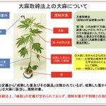"""【重要】CBDに関心のある皆さんへ。  有識者会議の資料で """"大麻樹脂""""の定義が不明瞭である事が指摘されています。  座長の鈴木勉氏はCBD規制論者です。  仮に会議が""""CBDは大麻樹脂に該当する""""という報告書を出せば 日本のCBD産業は一巻の終わりです。  #CBD #大麻使用罪"""