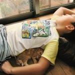 男の子と猫の成長した写真が素敵と話題に!長男・次男の関係もほっこりします!