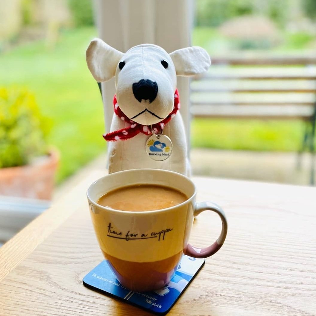 Let's stop and have a cuppa and a chat.  How are you?  How are things going?  #fridaythoughts #DouglasTheBoyWonder #howareyou