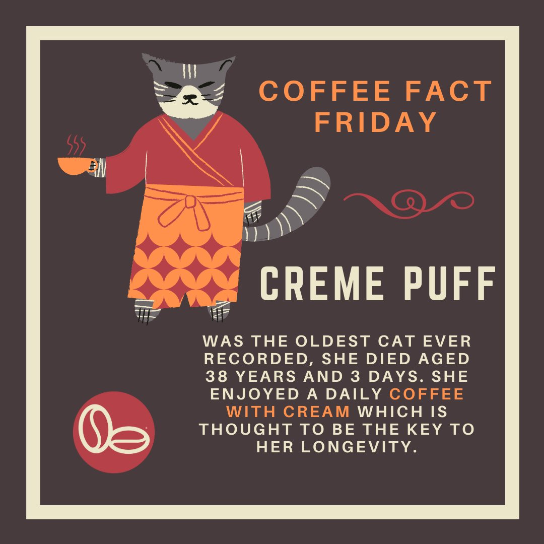 Some of our past #coffeefactfriday posts. Have a read and learn some fun coffee facts to tell your friends!☕️✨☕️✨☕️✨☕️✨☕️ #funfacts #coffeefacts #coffee #facts #norfolkcoffee #norfolk #southeastcoffee #coffeeroasters #learnsomethingnew #coolfacts #FridayFeeling #FridayVibes