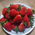 Image for the Tweet beginning: 딸기 미쳤다🍓♥ 금기 정도로 비싼데.... 행복을 얻었어😇🙊💛 . . . #strawberry