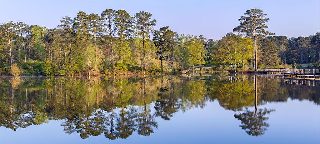 Callaway Gardens, Georgia  #garden #reflection #Georgia #healthcare #healthcareart #corporateart #healthcaredesign