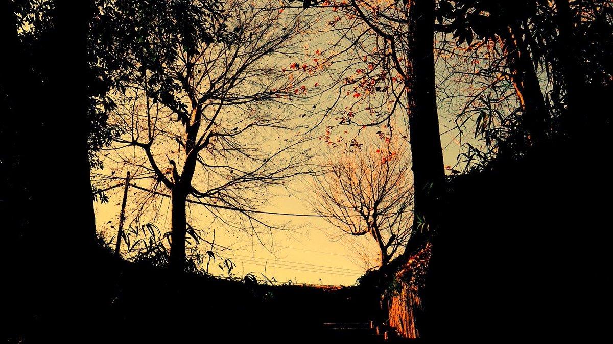 見上げよう #キリトリセカイ #空のある風景 #写真好きな人と繫がりたい #ファインダー越しの私の世界  #写真撮ってる人と繋がりたい