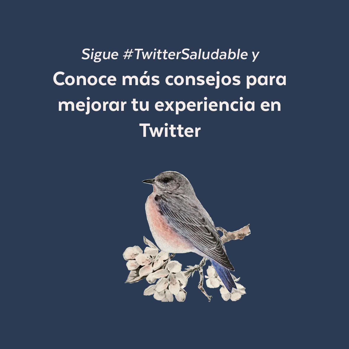 Te invitamos a seguir el HT #TwitterSaludable, para revisar las recomendaciones que hemos preparado para ti  😎