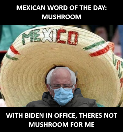#Berniememes