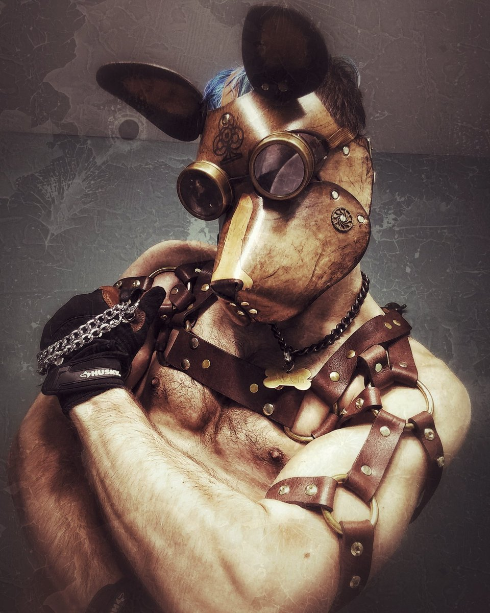 #steampunk#punk#pup#leather