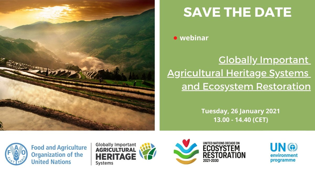 Learn more about Hani rice terraces in #China 🌾and the contribution the farmers are making to the restoration of our 🌏's precious #ecosystems.   Register NOW for next week's webinar  👉  #AgriculturalHeritage #GenerationRestoration