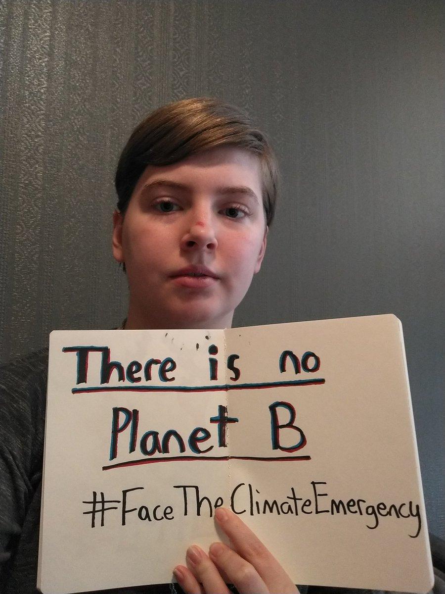 Climate strike #30  #climate #climatechange #ClimateCrisis #FridaysForFuture #FaceTheClimateEmergency #noplanetb #ClimateStrikeOnline