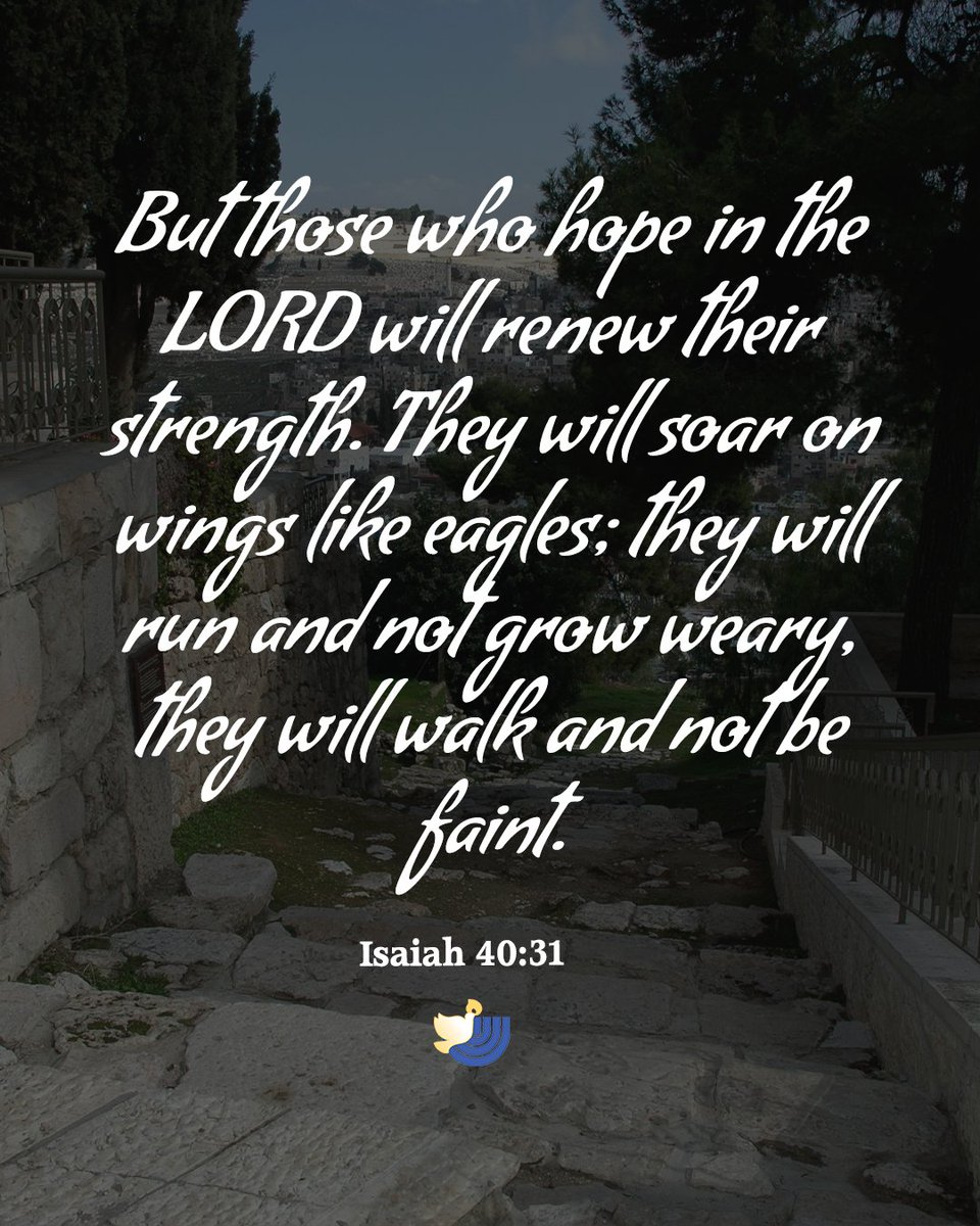 Isaiah 40:31 but those who hope in the Lord will renew their strength. They will soar on wings like eagles; they will run and not grow weary, they will walk and not be faint.  Learn more  #Israel #Charity #Prayer #Bible #bibleverse #votd #Pray #NIV #Psalm