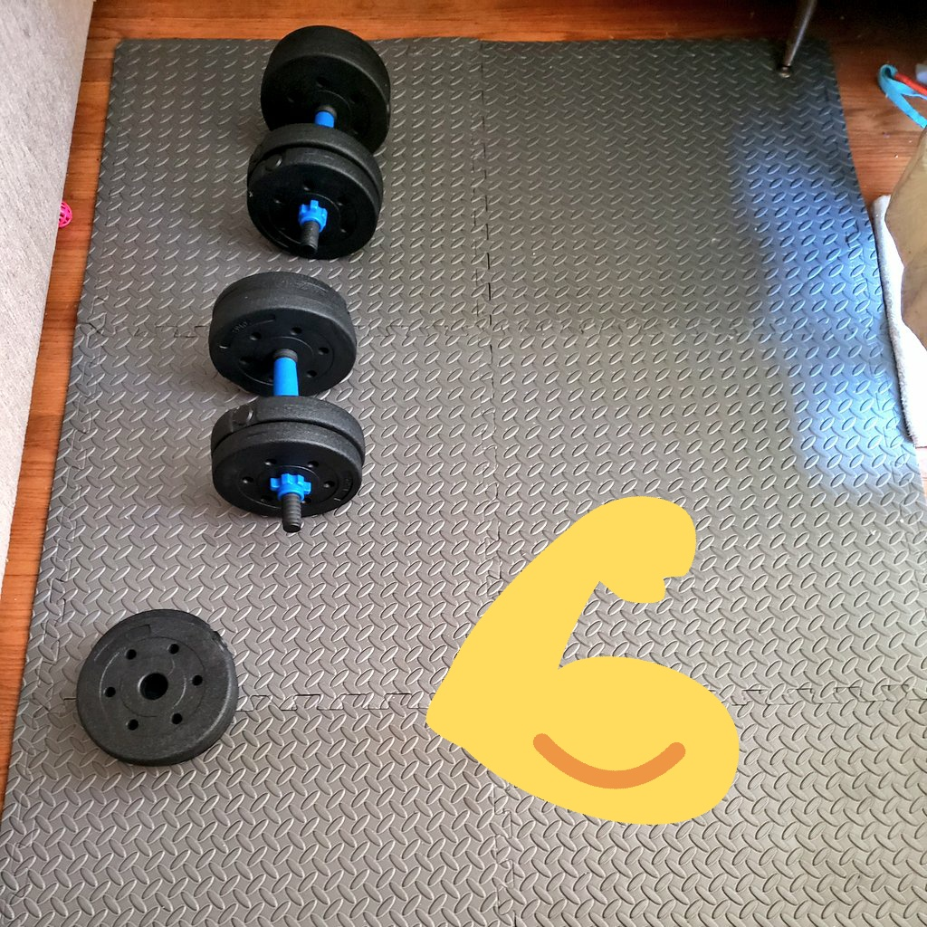 It's not impressive, has only 2 pieces of equipment and has cat toys surrounding it, but ya girl is hitting that home gym with the bit if time she can 😤🐺💪  #workout #fitness #startsmall #fridaymorning