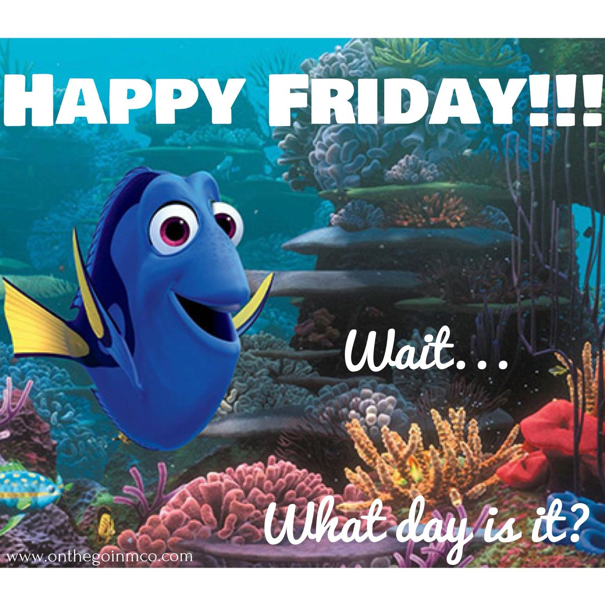 It's definitely Friday! We made it...  Everyone enjoy your day and weekend ahead, and as always, call us if you need us. We're always here for you!  #BNPD #FinallyFriday #FridayVibes #CommunityFirst