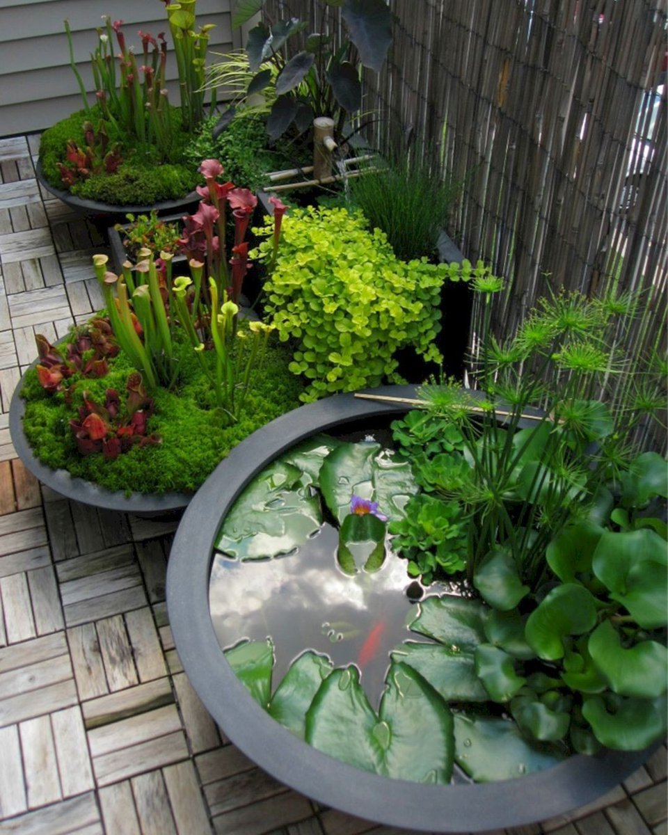 Creative garden ideas💧  #gardener #greenhouses #gardenlife #pond