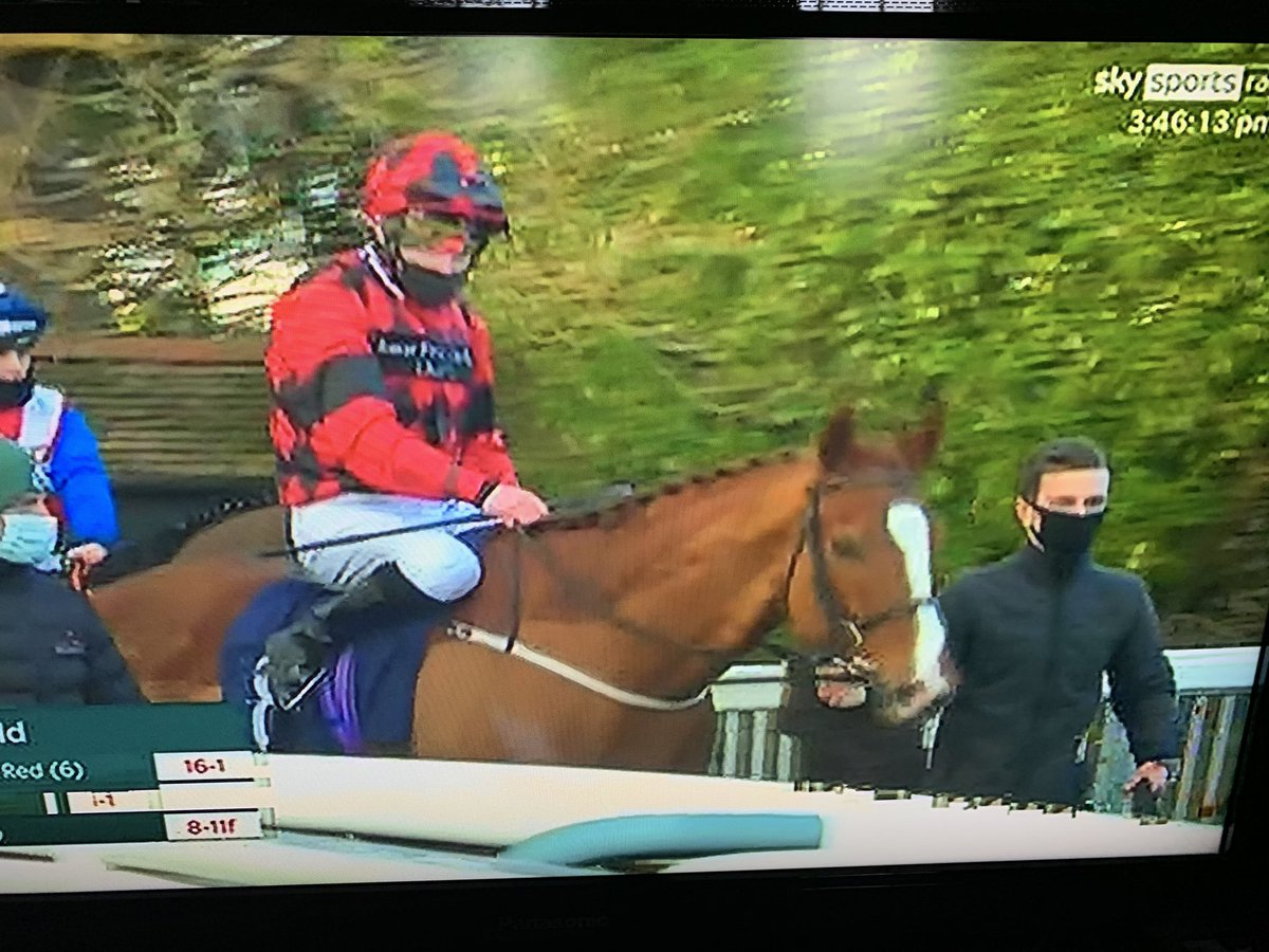 SOCIETY RED wins ⁦@LingfieldPark⁩ with a champagne performance I'm really proud of him huge thanks to connections ⁦@Tonyhamilton83⁩ ⁦@RichardFahey⁩ I'm celebrating tonight big style