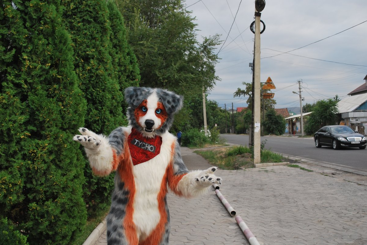 Since it's been so long since I have been able to travel, I am forced to dig deep for some unpublished photos for today's #fursuitfriday