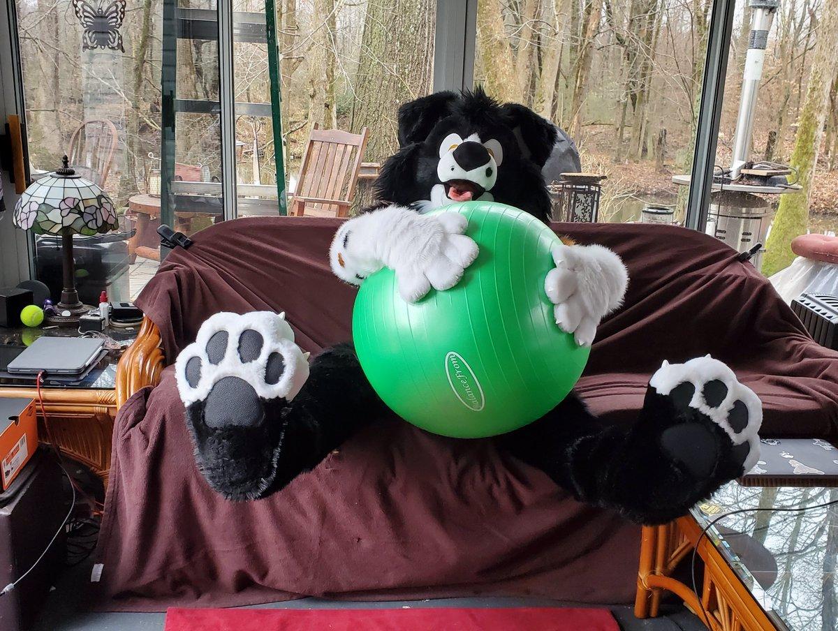 I found a GIANT BALL!!!  #FursuitFriday