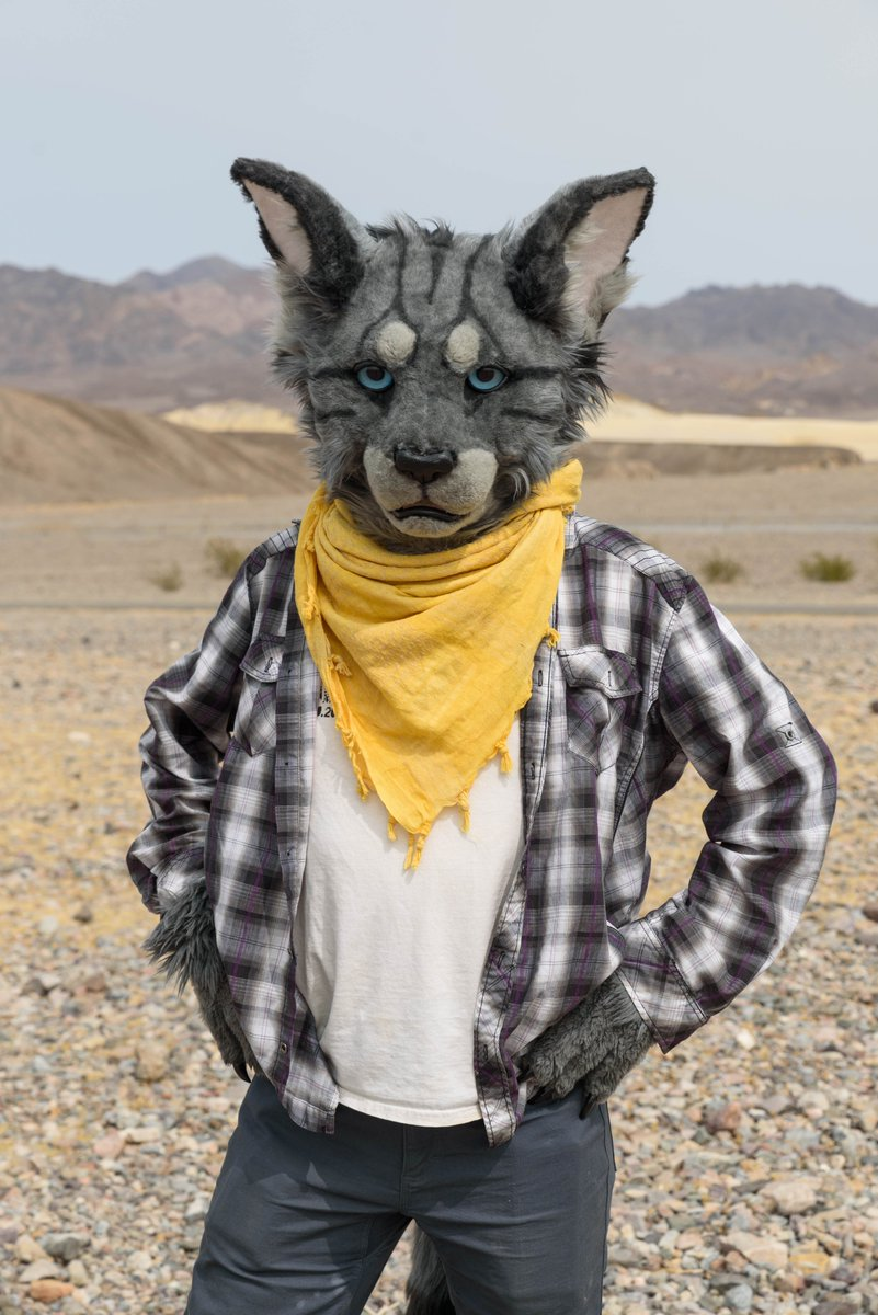 I'm already over Minnesota winters. Looking back to when I partial-suited in Death Valley. #FursuitFriday   📸 @kehmetfox  🧵 @TheGoldenMaw