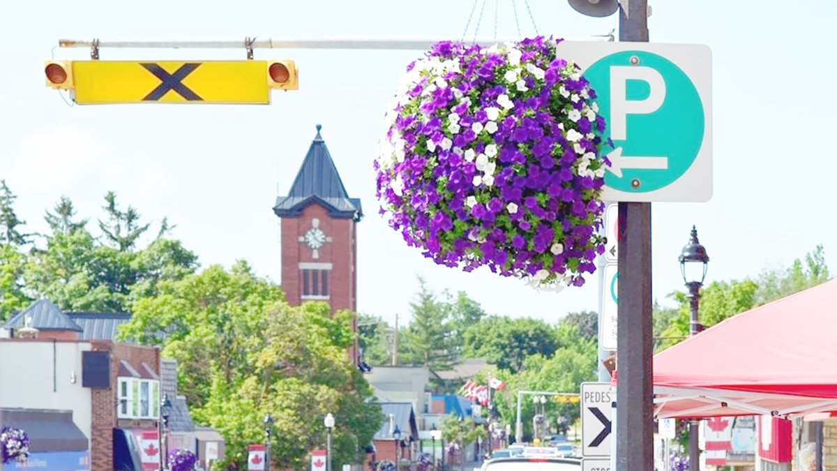 Flashback to warmer days and the #floral colours that brighten up #ElmiraOntario in the summertime.  #fbf #flashbackfriday #smalltownliving #downtownelmira #downtownelmirabia #woolwichtownship #thisislocal