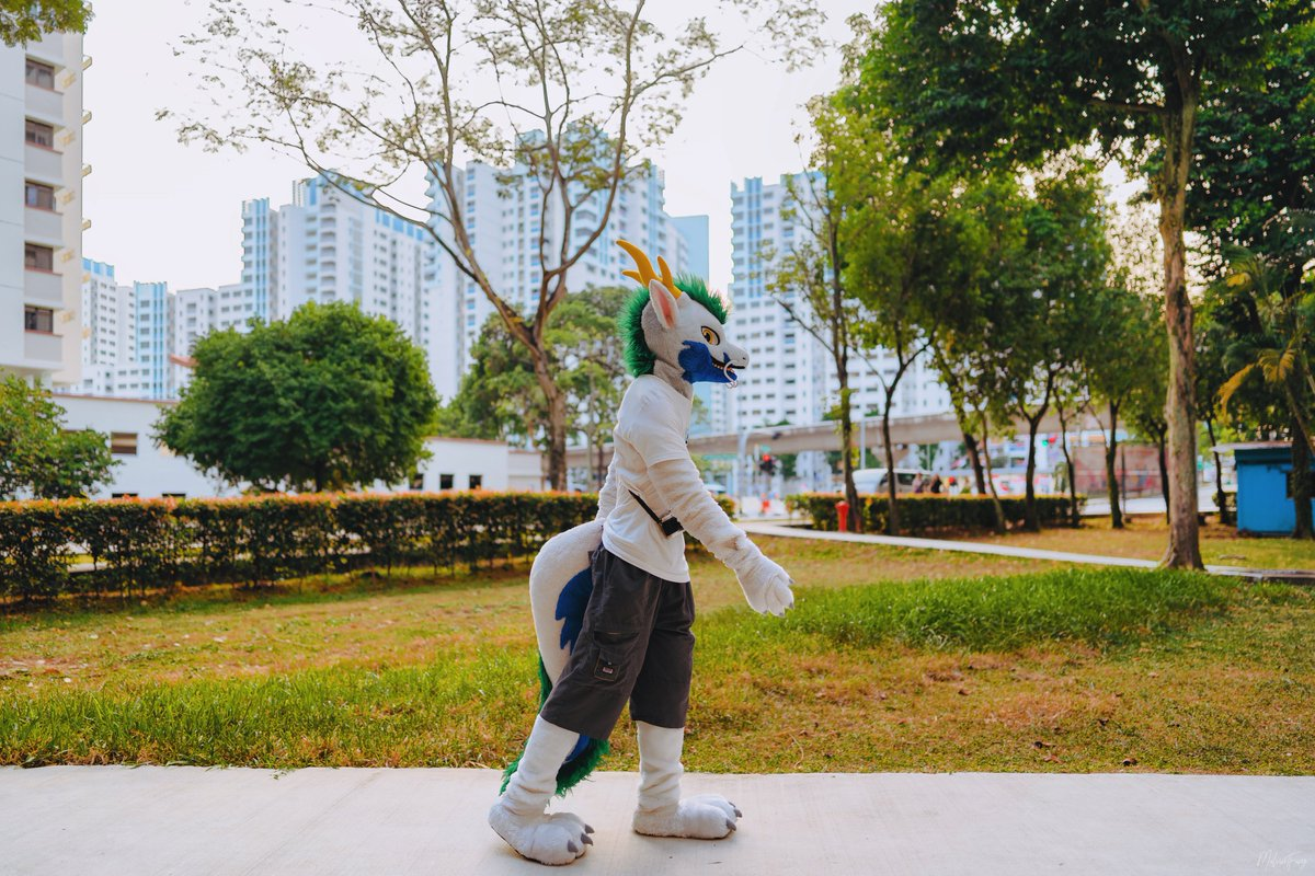 Let's try #FitnessFriday along with #FursuitFriday by having a walk in the park with @FangSladeDrum as photographer~  來來散步吧~