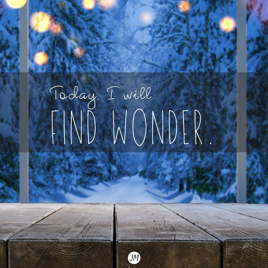 Find some wonder today.   #affirmation #dailyaffirmations #positivity #inspire #hope #belonging #positivevibes #empoweredlife #inspiredlife #wonder #joy #encourage #evolve #imagine #entrepreneur #momlife #mompreneur #tgif #fridayfeels