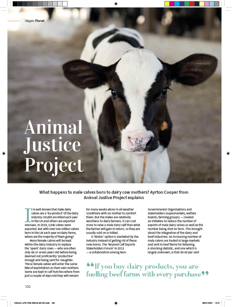 Ayrton, our senior campaigner, has written about our groundbreaking #EXPIRED campaign in the latest @VeganLife_Mag 🙌 🧡  Take a look at a preview of it here and find a copy in shops now!  A huge thanks to @VeganLife_Mag for featuring our campaign!  👉