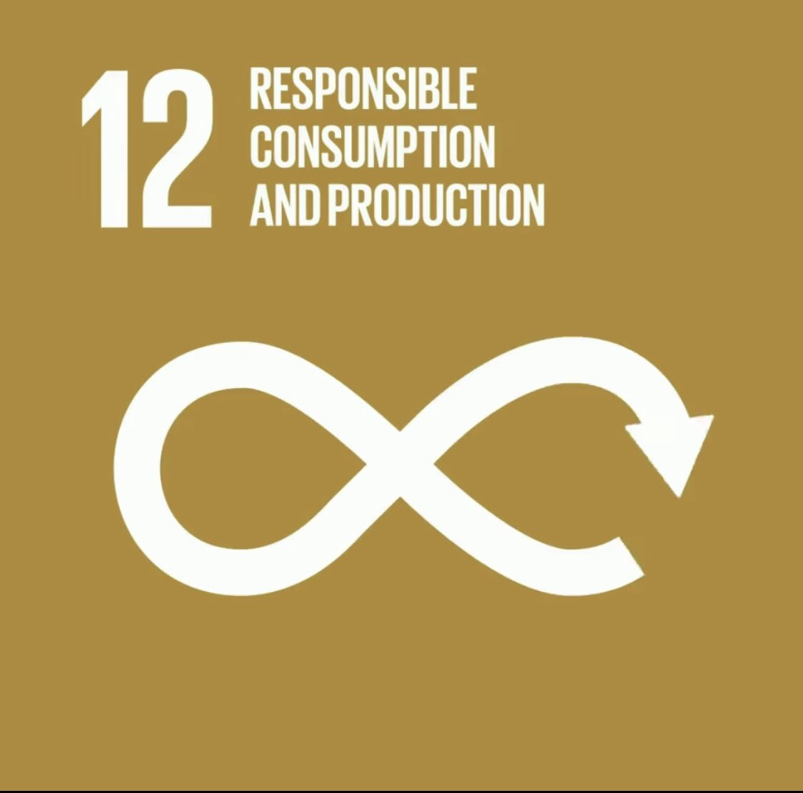 SDG 12 is meant to ensure good use of resources, improving energy efficiency, sustainable infrastructure, and providing access to basic services, green and decent jobs and ensuring a better quality of life for all.  #UN75 #SDG12 #Agenda2030 #GlobalGoals #bkdfoundation