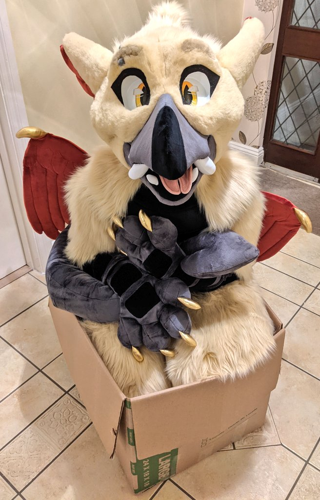 More birb in box time!! I took a few photos too and nearly forgot to post them!  ✂️: @/sheenitude  #furry #FursuitFriday