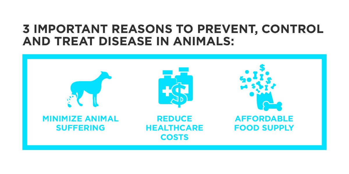 We're dedicated to preserving animal health, because animal health affects us all.   #AnimalHealth #AnimalHealthMatters #OneHealth