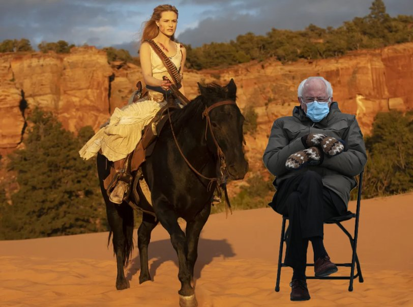On the next Season of Westworld.  #Berniememes