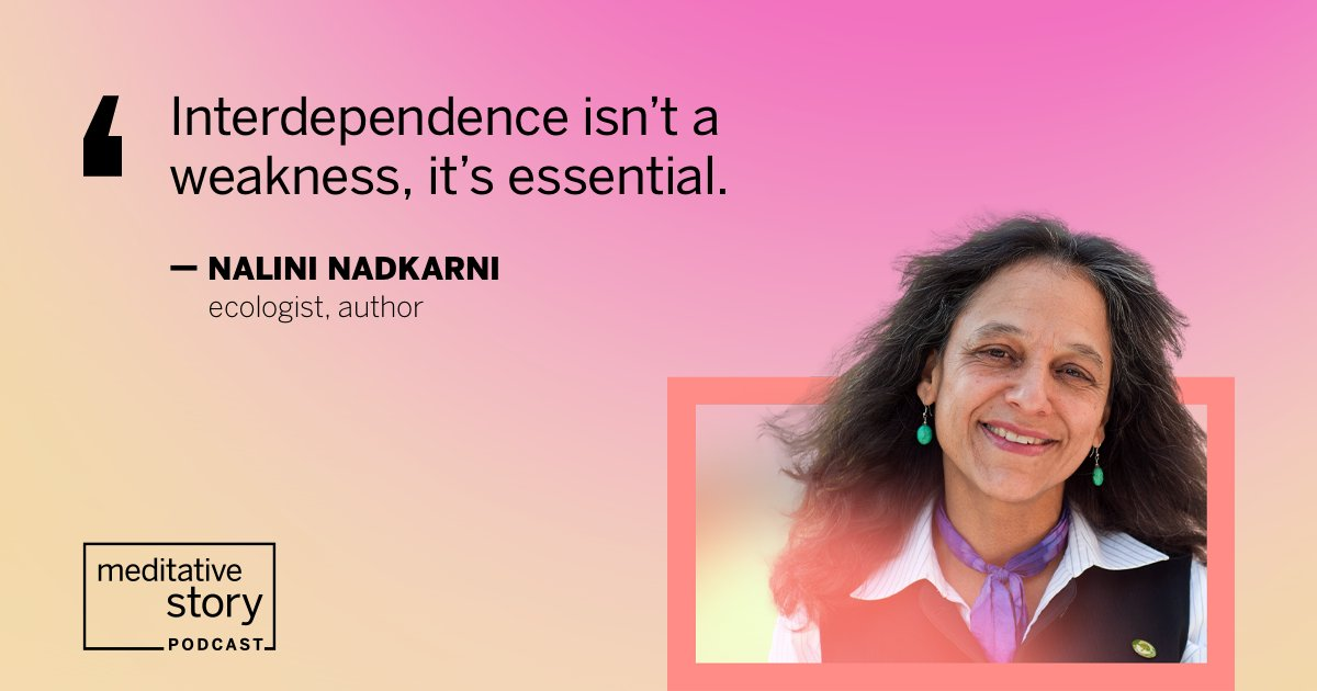 Ecologist Nalini Nadkarni had always been in constant motion — until a 50-foot fall brought her to an abrupt halt. In her #MeditativeStory, she opens up about how the accident changed her life, and how she shaped a new one with help from those around her: