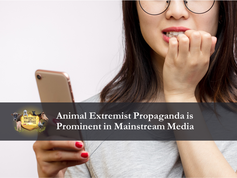 "Animal extremist messaging is prominent in #MSM. Make sure you ""consider the source"" when reading articles and watching news stories and videos about animals.  #cats #dogs #AnimalsDoWhat #AnimalWelfare #AnimalHealth #animallovers #animalrescue"