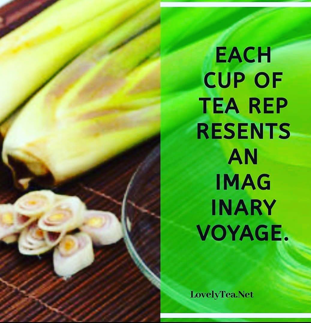 #supportsmallbusiness☕☕☕☕ #motivate #didyouknowfacts ☕ #tealovers #tealover #teaaddict #greentea #liveyourbestlife #tealife #teacup #teaholic  #lovelytea #tealovers☕️ #matcha #j🍵 #ilovetea #teagram #lovelytea___ #healthy #love #lovelyti2002 #teaandseasons