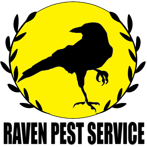 This week's local business interview is with Raven Pest Service! #homesmartconnect #raven #pest #control #Lake #County #Illinois #IL #WI #Wisconsin #fridayfun #fridaythought #fridaymood #fridayfeeling #fridayvibes #localbusinesses #smallbusinesses #support