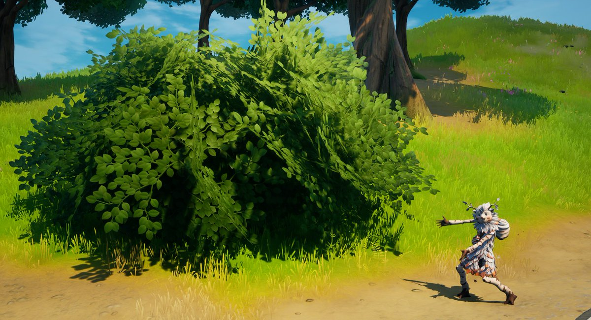 So you all think you know the Island pretty well...  Where can you find this bush?