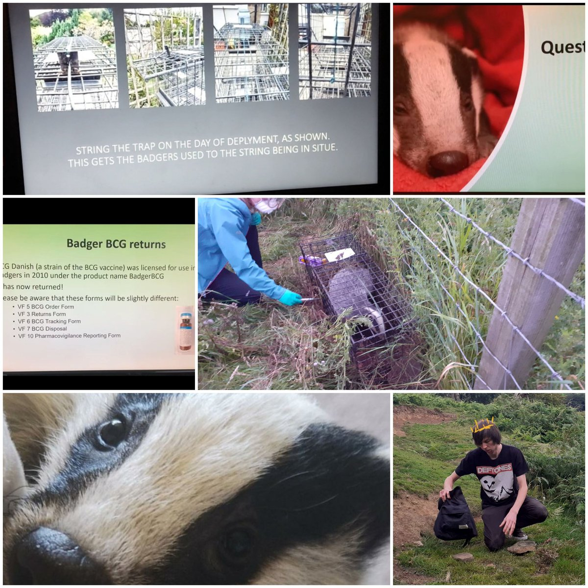 Day 228 #COVID19 #fridaymorning #vaccination @DerbyshireBEVS @HighPeakBadgers @TimBirchWild great day, training with our volunteers,Thanks for your commitment/support special thanks 2 the 3 badger grps @MDBG_badgers @CalderdaleBadg1 @DerbysWildlife @LumpyandFriends @WYP_CNewsome