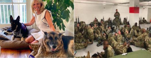 Replying to @QuietStorm9900: Biden Dog Beds 👇                 National Guard Beds 👇