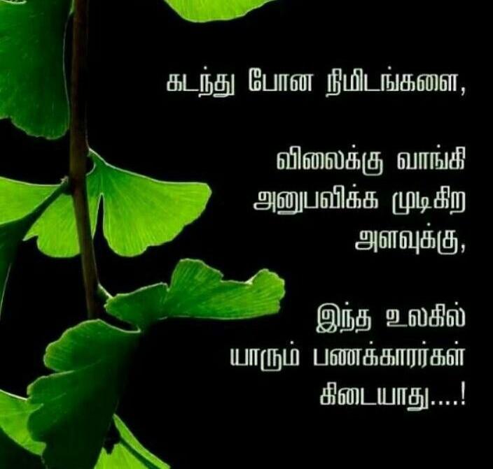 Quotes #TamilQuotes #besttamilquotes #quotes #MotivationalQuotes #smile #dailyquotes #Quote #life #love #Solve