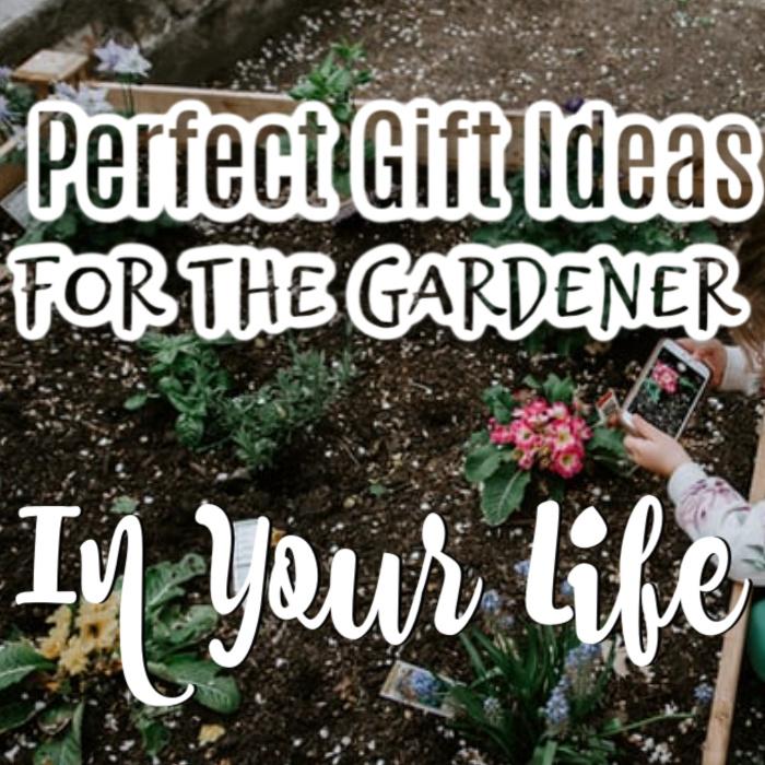 Gifts For Gardeners   #growyourown #growsomethinggreen #wholefoods #homegardening #horticulture #gardeningistherapy #urbanorganicgardener #gardeningphoto #urbangardening #gardeningismytherapy
