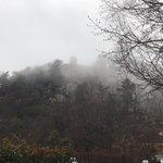 Image for the Tweet beginning: ◯山城展望台(鷹ノ条山)  モノレールのぶんぶん丸です。  本日、1月23日(土) 雨と風、 モノレールは運休しています。  #ひろしま遊学の森 #森林公園  #モノレール  #雲海