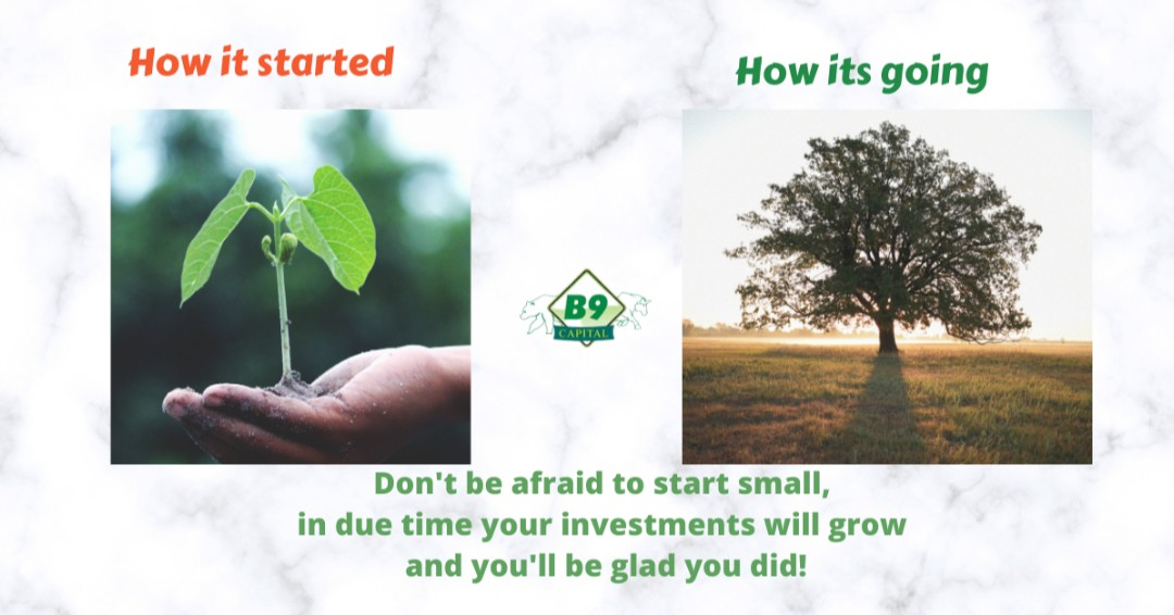 Your investments of today and yesterday will yield you good results tomorrow. Don't be afraid to start small. Invest today and reap the rewards tomorrow! We are willing and ready to guide you through your #investment journey from the start! #StartSmall