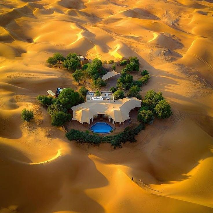 Al Maha Desert, Dubai🇦🇪  #almaharesort #dubai #uae #travel #epictouristspots #almahaexperience #almaha_resort #photography #almahadesertresort #almahadubai #explore #mydubai #dubaistyle #vacation #holidays #tourist_pic #honeymoon #dubaidesert