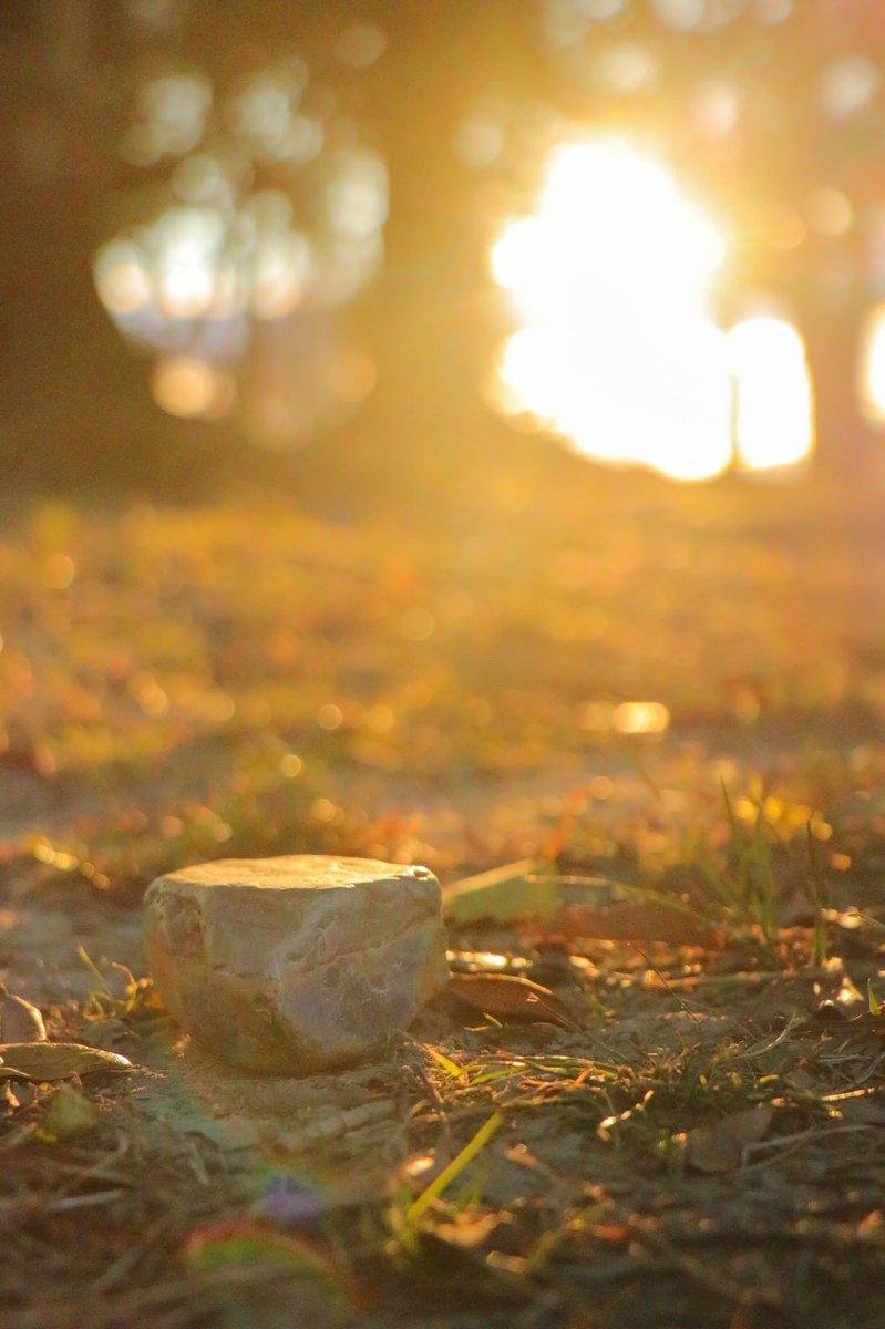 おはようございます😏  #写真で伝える私の世界 #カメラ男子 #photography #キリトリセカイ #ファインダーの越しの私の世界 #光 #夕焼け #photo