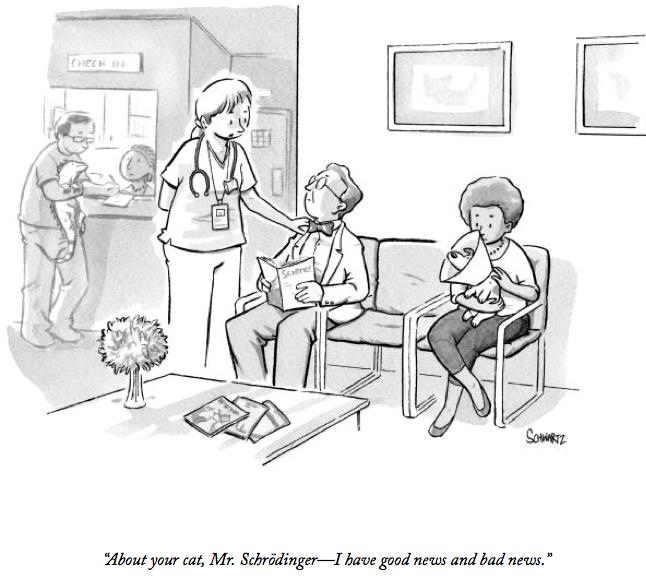 About your cat, Mr. Schrödinger — I have good news and bad news  (Benjamin Schwartz, New Yorker) https://t.co/S9QciuUcma