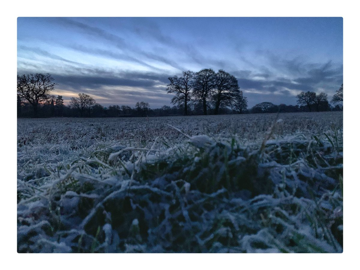 Good morning - here are some images from this mornings walk - brr it's cold and watch out for that black ice 🥶#knowle @ThePhotoHour @StormHour