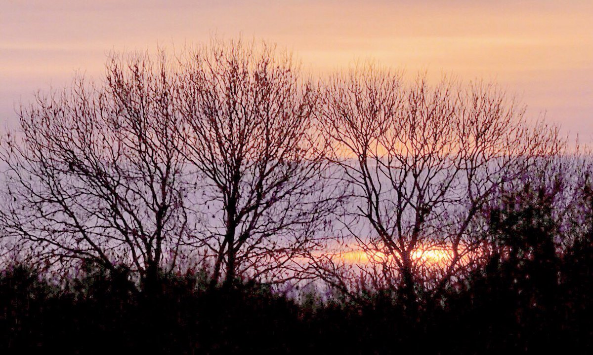 Just a touch of colour for this morning's #sunrise at Twickenham on a cold frosty #SaturdayMorning   Have a great weekend  #StaySafe 🙏🏻  @StormHour @ThePhotoHour @LensAreLive @ChrisPage90 @bbcweather  @SallyWeather @TwickenhamNub  @metoffice #loveUKweather