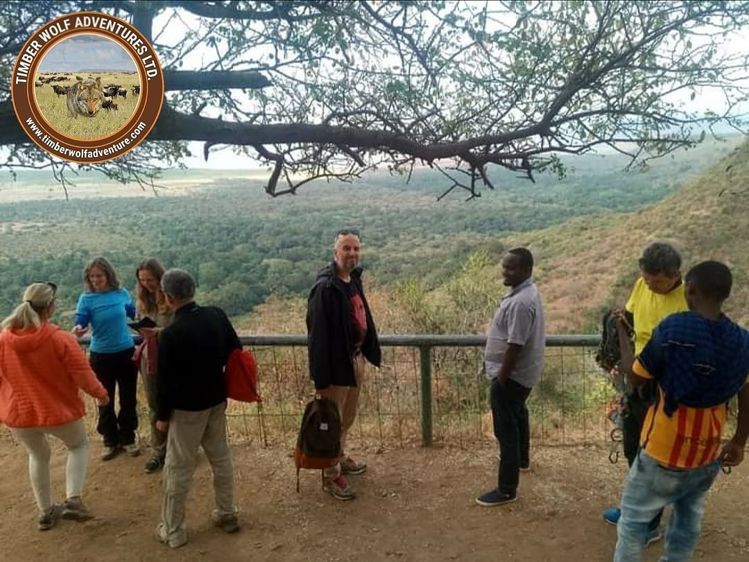 Standing proudly at the View point.  #tanzania #africa #zanzibar #travel  #safari #nature #photography #serengeti #adventure #africansafaris #travelafrica #instatravel #beach #natgeo #explore #kilimanjaro #visitafrica #familytravel #travelphotography #giantsenecio #wanderlust