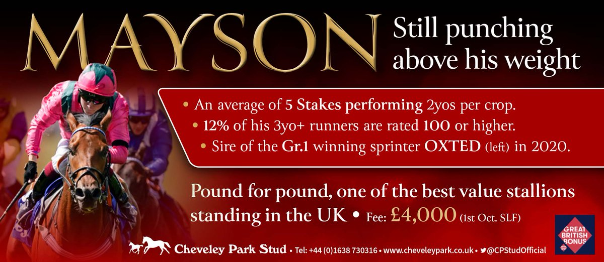 💫 Have you checked out the impressive stats of @CPStudOfficial's MAYSON❓  ✅ An average of 5 Stakes performing 2yos per crop ✅ 12% of his 3yo+ runners are rated 100 or higher ✅ Sire of the Gr.1 winning sprinter OXTED in 2020  And still only standing for £4,000‼️